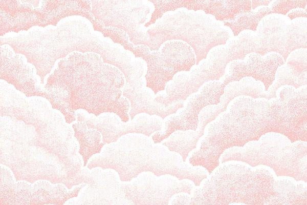 Halftone Clouds, rose, Florence Broadhurst fabric