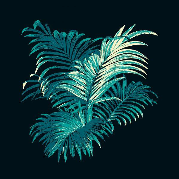 4 Colour Palm, Teal, framed canvas art